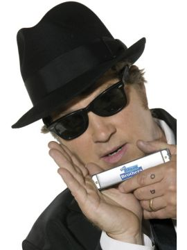 Blues Brothers Kit For Sale - Blues Brothers Kit, with Hat, Sunglasses, Harmonica and Tie | The Costume Corner Fancy Dress Super Store