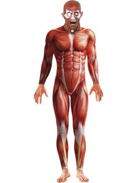 Anatomy Man For Sale - Anatomy Man with Bodysuit and Mask. | The Costume Corner Fancy Dress Super Store