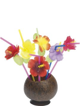 Hibiscus Straws For Sale - Hawaiian Straws, Mixed, with Flowers | The Costume Corner Fancy Dress Super Store