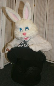 Rabbit For Sale -  | The Costume Corner