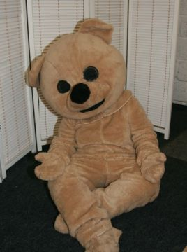 Teddy Bear For Sale -  | The Costume Corner