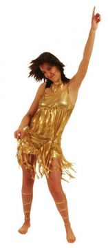 Tina Gold Dress For Sale - Tina Gold Dress (Hire Costume) | The Costume Corner