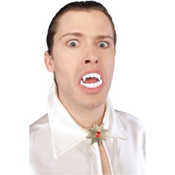 Vampire Teeth For Sale - Vampire teeth. | The Costume Corner Fancy Dress Super Store