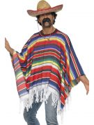 Poncho costumes