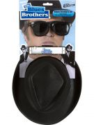 Blues Brothers kit packaging
