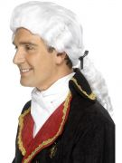 42096 costumes